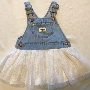 Overall Skirt with sparkly tulle bottom